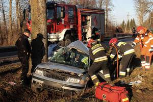 Strażacki tydzień. Śmierć na drodze, płonące kominy i samochody