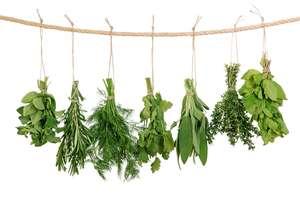Mieszkanie pachnące ziołami