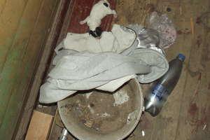 Wyrzucił dwa szczeniaki do kontenera na śmieci. Usłyszał zarzut znęcania się nad zwierzętami