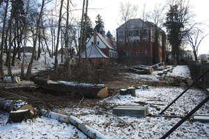 Wycięto drzewa z okolic ulicy Drwęckiej