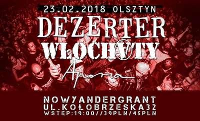 Punkowo i hardcore'owo w Andergrancie. Na scenie Dezerter, Włochaty i Aporia