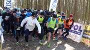 Wiosenna Piątka, czyli bieg na 5 km w Olsztynie