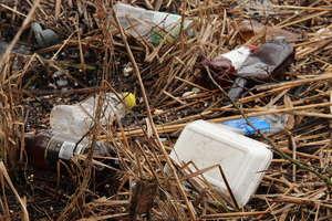 Śmieci wzdłuż brzegu jeziora Niegocin przy ścieżce Giżycko – Wilkasy