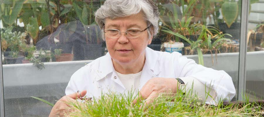 Prof. Irena Giełwanowska