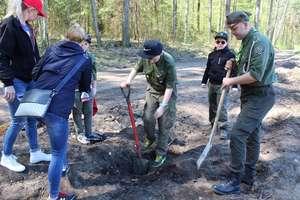 Harcerze posadzili las dla uczczenia 100-lecia niepodległości