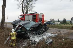 Mercedes uderzył w drzewo na drodze Łędławki - Paluzy. Kierująca ukarana mandatem [ZDJĘCIA, FILM]