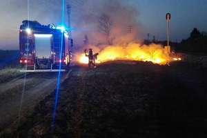 Strażacy każdego dnia walczą z pożarami traw