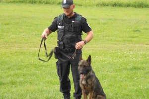 Pies policyjny Lak i jego przewodnik Dariusz Lamkowski okazali się najlepsi w województwie!