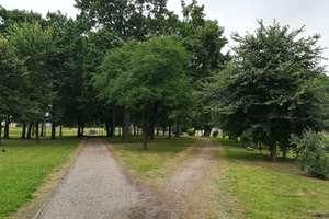 Dlaczego w parku przy Łynie w Bartoszycach nie ma ławek?