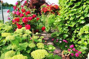 Na ogród trzeba mieć pomysł