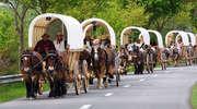Tabor zaprzęgów konnych zatrzyma się w Bisztynku i Liskach