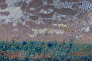 Wernisaż wystawy malarstwa Tomasza Myjaka