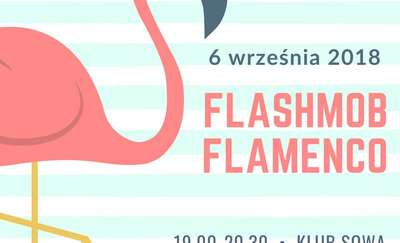 Flamenco w Olsztynie
