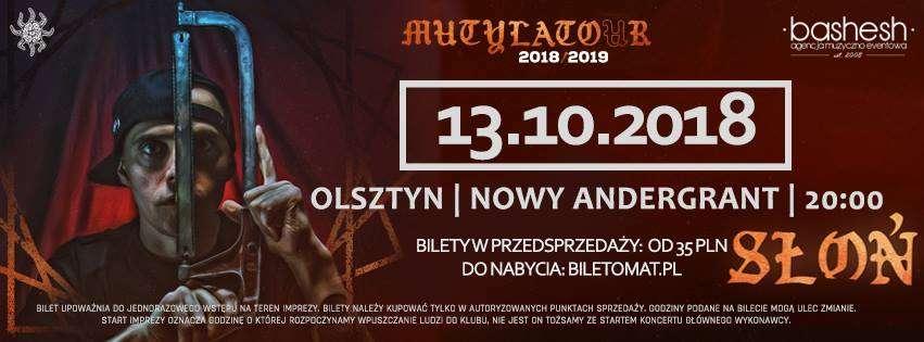 Koncert SŁOŃ WSRH D666a w Olsztynie - full image