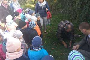Święto Drzewa w Przedszkolu Publicznym nr 2 w Bartoszycach.