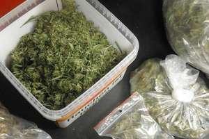 Ponad 800 gramów marihuany ukryte w sejfie i skrytkach