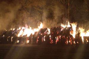 Ponad osiem godzin osiem zastępów straży gasiło pożar balotów słomy