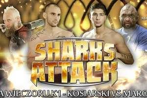 Ostródzcy fighterzy powalczą na grudniowej gali Sharks Attack
