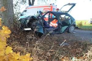Wypadek w Wapniku. Kierowca trafił do szpitala