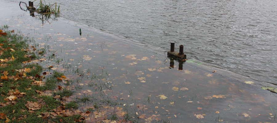 Rzeka Elbląg