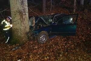 23-letni kierowca BMW nie dostosował prędkości i uderzył w drzewo