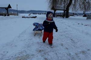 Zimowy Brzdąc: mamy pierwsze zgłoszenie