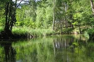 Nazwy wodne w dorzeczu Sapiny