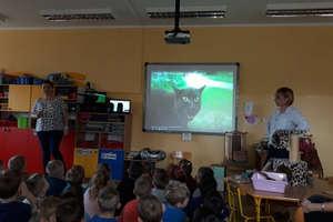 Dzień Kota w Przedszkolu Publicznym nr 2 w Bartoszycach