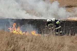 Pożary traw to głównie bezmyślne podpalenia