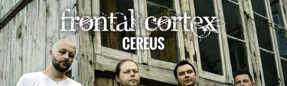 Frontal Cortex / Cereus