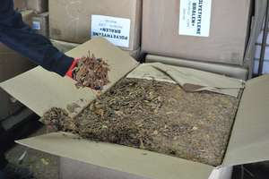 Przechwycili tytoń za ponad 3 miliony [FOTO + VIDEO]
