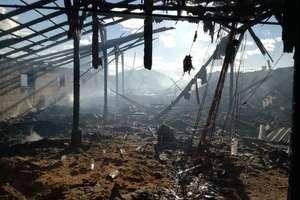 Czerwony Dwór. W pożarze kurnika spłonęło 20 tys. kurcząt [ZDJĘCIA]