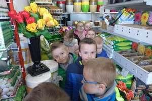 Biedronki w sklepie nasienno - ogrodniczym