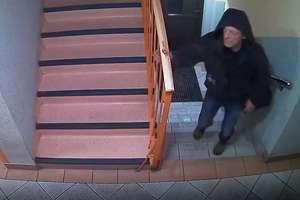 Kto porzucił koty? Policja szuka mężczyzny