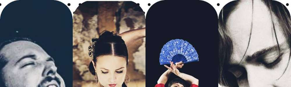 Gorące flamenco w Sowie