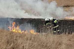 Olsztyńscy strażacy w akcji ratowania Biebrzańskiego Parku Narodowego. Apelują: Stop pożarom traw!