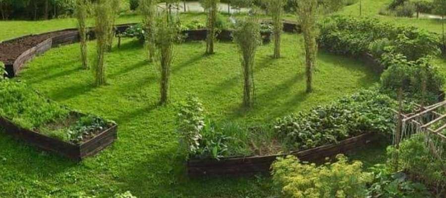 Permakultura Skolity - w zgodzie z naturą