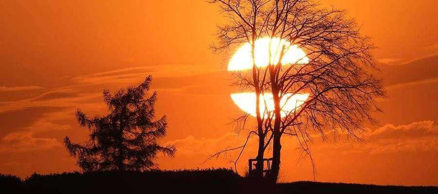 Zachodzące, za drzewem Słońce. Warmia