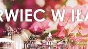 Czerwiec w Iławie – sprawdź kalendarz imprez na najbliższy miesiąc