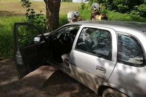 Kierowca opla uderzył autem w drzewo, po czym uciekł... w pole