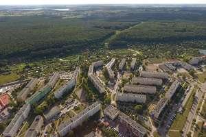 Mieszkańcy sami sprzątną las za osiedlem Podleśnym