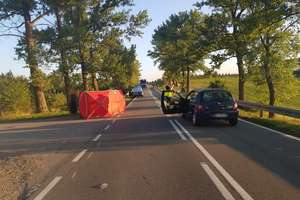 Policjanci szukają świadków śmiertelnego wypadku