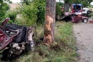 Auto rozerwane na pół, a kierowca wysiadł z niego o własnych siłach [zdjęcia]