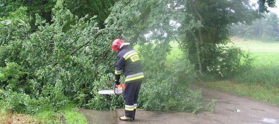 Wiatr wywraca drzewa na drogi i linie energetyczne w gminie Łukta