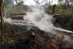 Palił się torf na terenie rezerwatu Bagno Nietlickie
