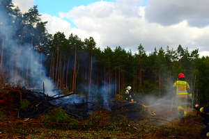Pożar lasu w Leśnictwie Ostrówki z udziałem gaśniczego Dromadera. Na szczęście były to tylko ćwiczenia...
