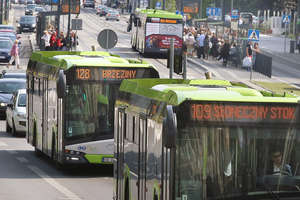 Więcej autobusów przegubowych na obciążonych liniach w Olsztynie