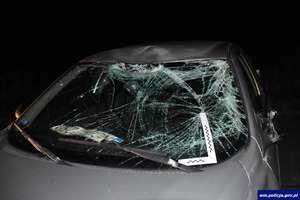 Dwa wypadki z udziałem łosi. Policjanci apelują o ostrożność!