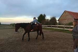 W SOSW w Giżycku ruszył projekt z hipoterpii i podstaw jazdy konnej