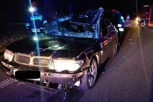 Auto uderzyło w przebiegające łosie